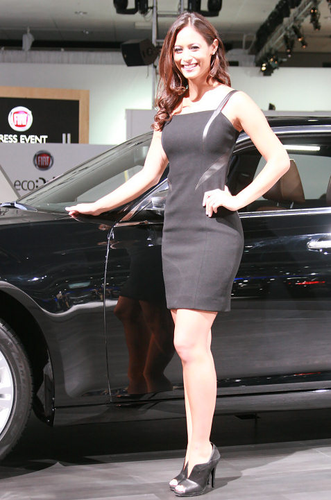 7-booth-babe-at-2011-la-auto-show
