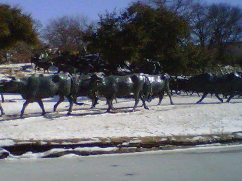 3-bull-statues