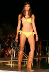 52-miami-dolphins-cheerleaders-in-ed-hardy-fashion-show