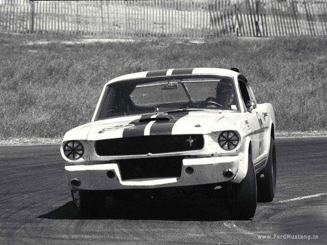 ford-mustang-shelby-gt350-1965-3