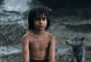 the_jungle_book_1