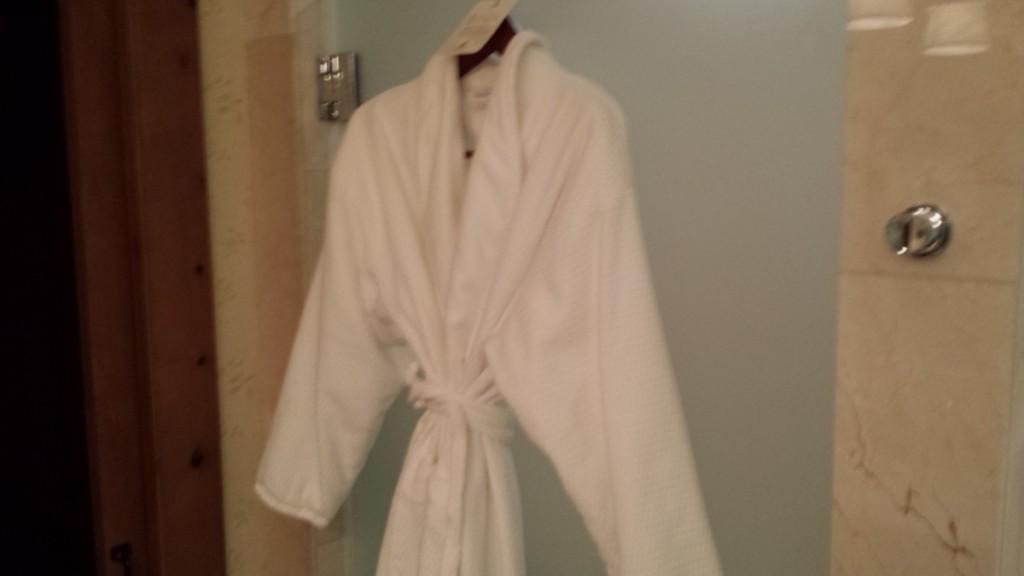 The+Robe
