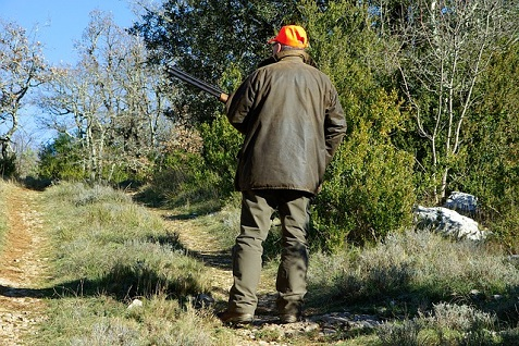 hunting-583086_640