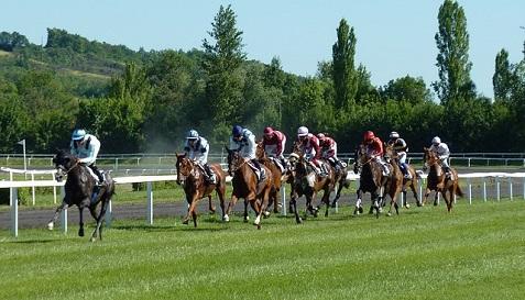horse-race-1665688_640